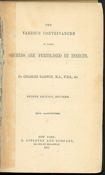 Fertilisation of Orchids